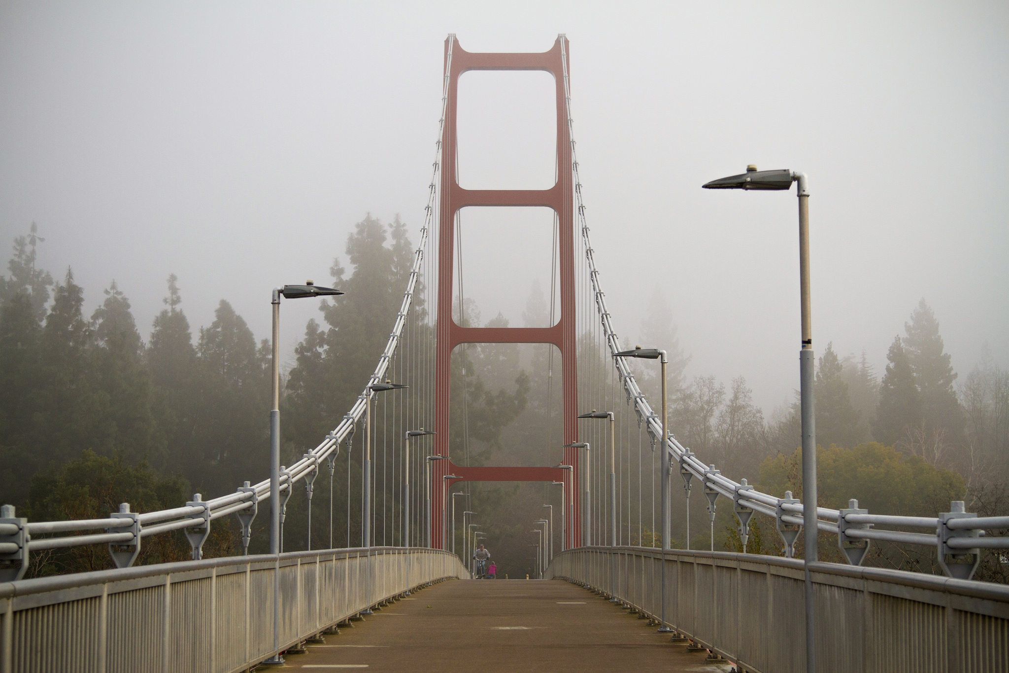Guy West bridge in the fog