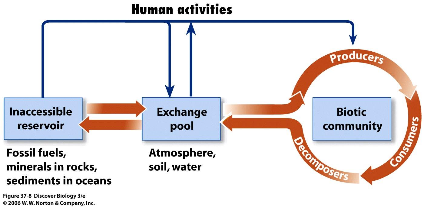 Aquatic Ecosystems: Biology 4.5 Aquatic Ecosystems