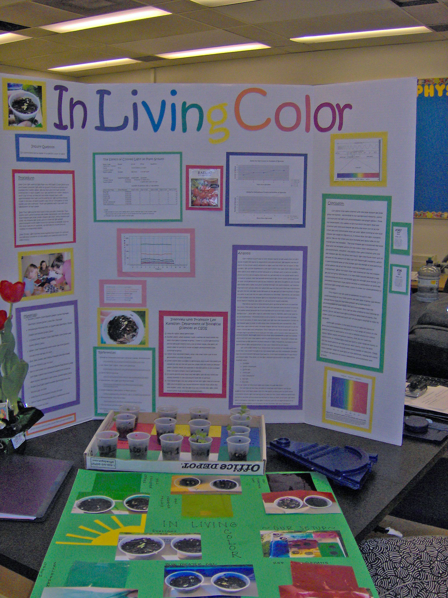 science fair project board layout examples