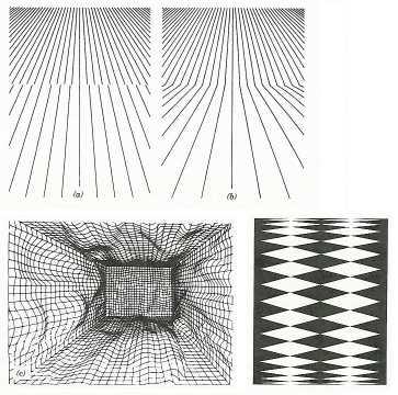 Texture gradient perception