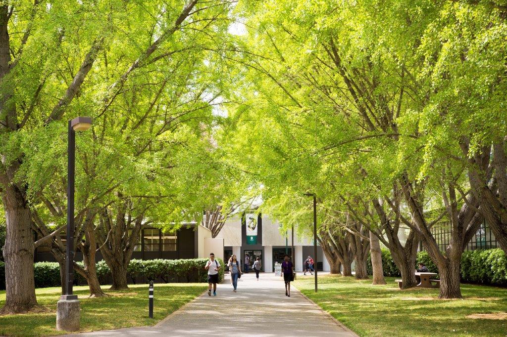 Tree Campus USA 2017