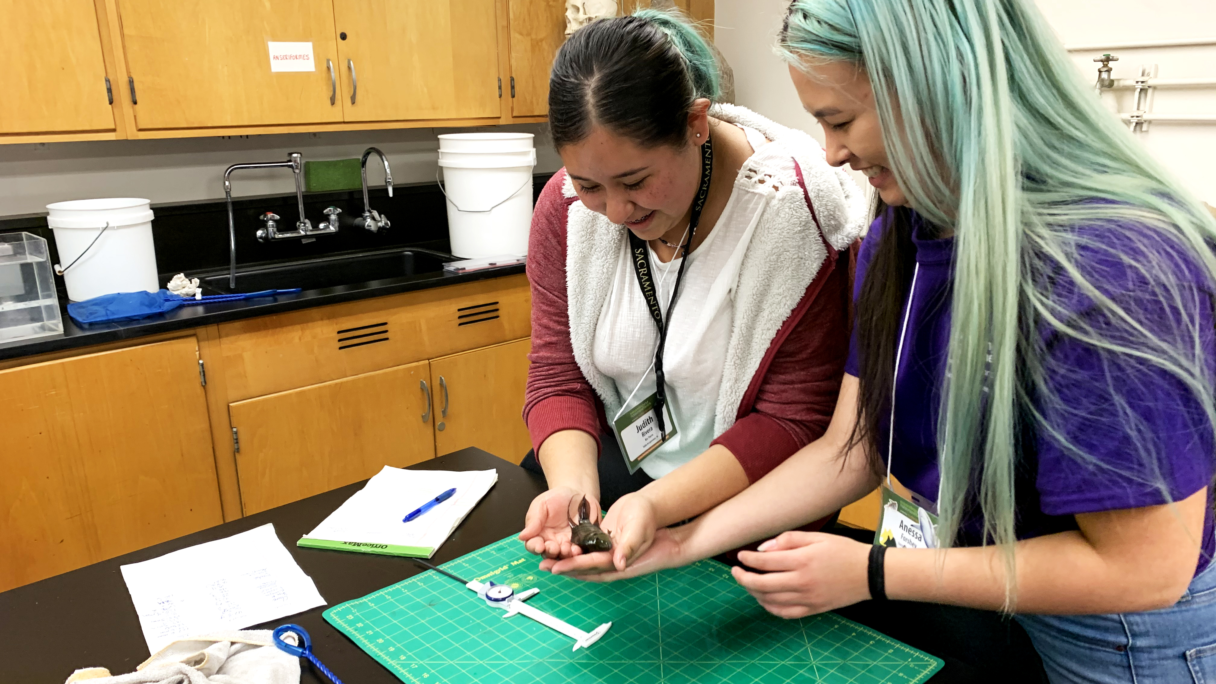A girl in a science lab holding a small fish while a Sacramento State studet looks on