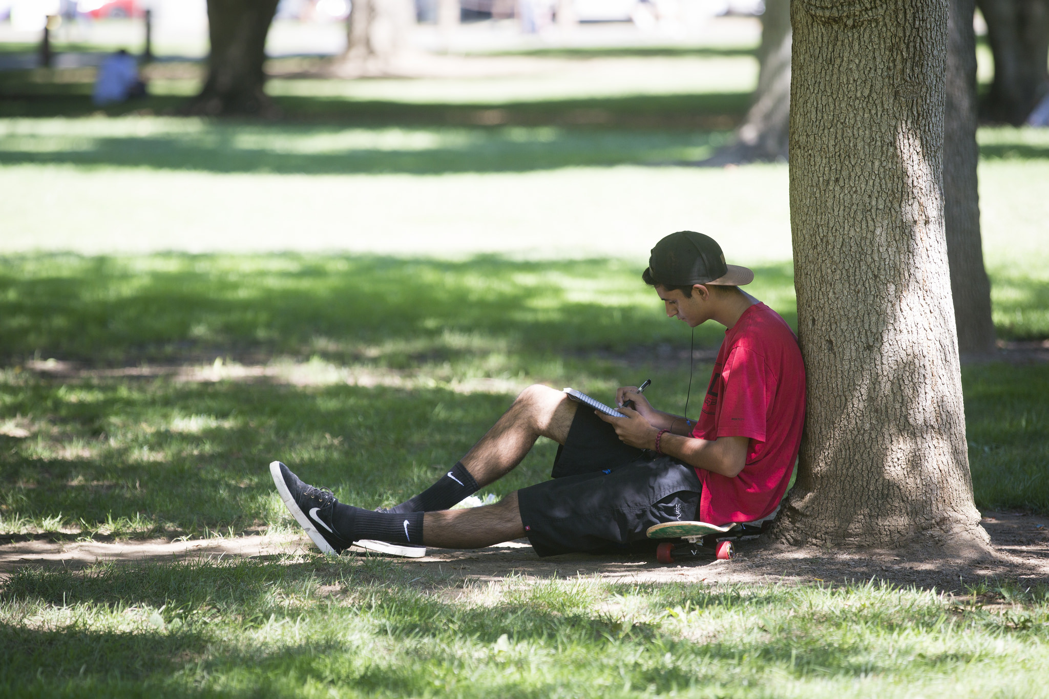 A photo of a student reading in the shade under a tree