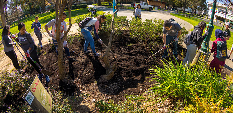 Projects range from mulching and composting to refurbishing the Living Building in the Arboretum.