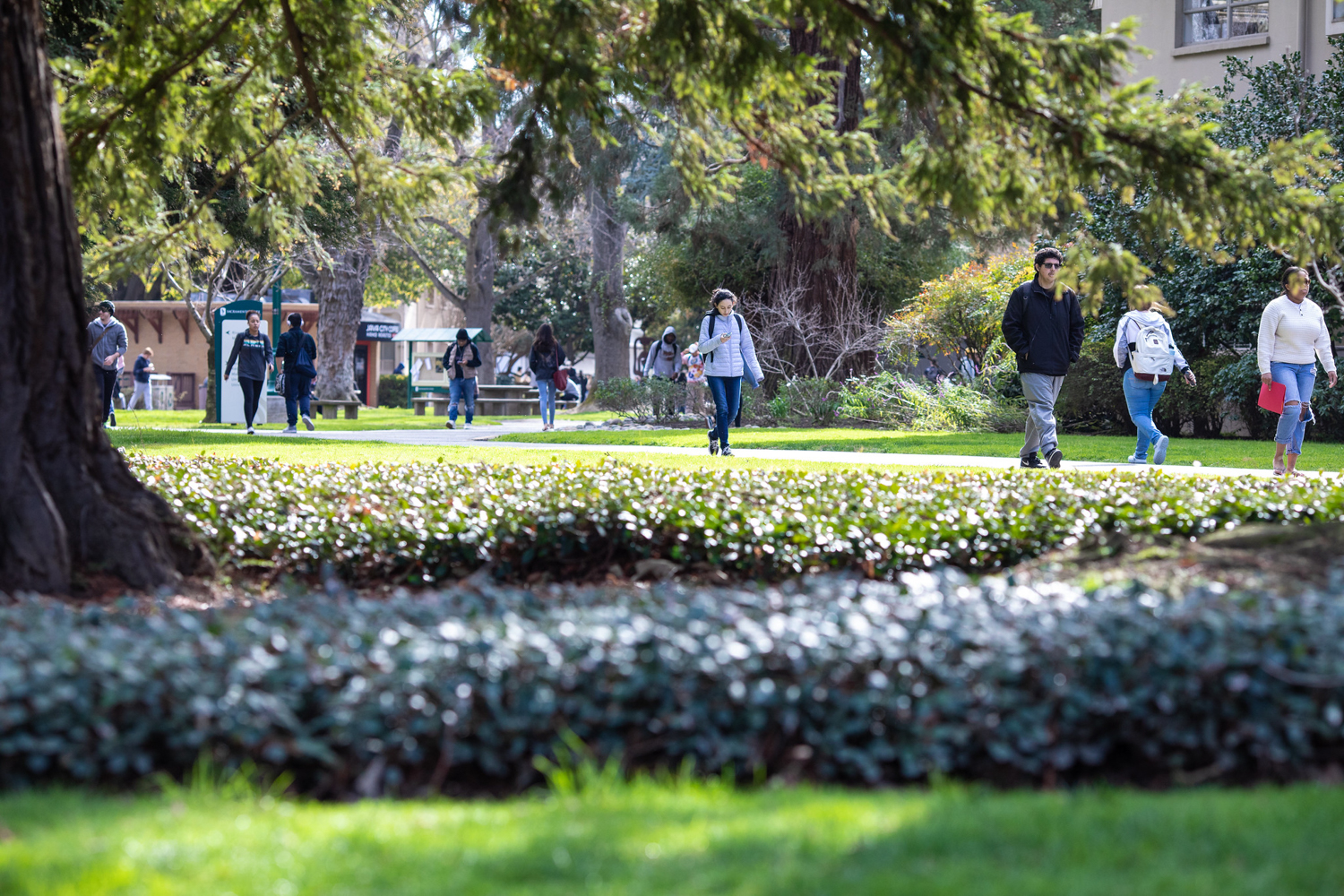 A new plan, months in the developing, is meant to make antiracism sentiments a reality at Sacramento State.